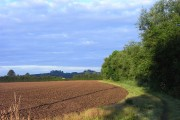 Farmland, Dorchester