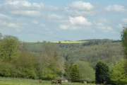 Taken near Brownshill looking SE across the Golden Valley