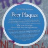 Blue plaques with a difference and these are Peer Plaques