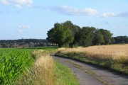 Road, Mapledurham