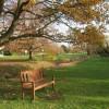 Beyton Green