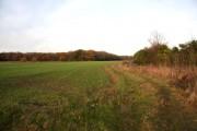 Farmland near Borley Green
