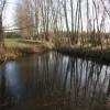 Pond next to Thurston Road