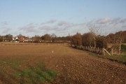 Farmland at Woolpit Green