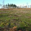 New Heathland