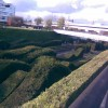 "The ""wavy hedge maze"" in Silvertown"