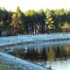 Frosty dam wall