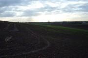Farmland near Holme