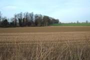 Farmland near Hotham