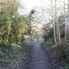 Public Footpath, Tring