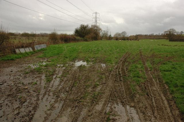 Farmland near Hucclecote