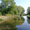 Trent and Mersey Canal near Findern, Derbyshire