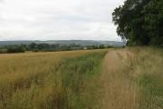 Farm track near Berrington Hall