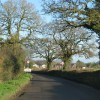 Approach to Feniton