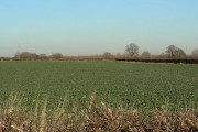 Countryside near Cotham