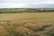 Barley, Strathendry