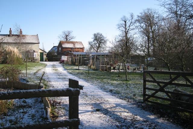 Radford Barn and garden
