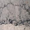 Coal, Link Sands