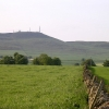 Craigowl Hill from North Mains of Baldovan
