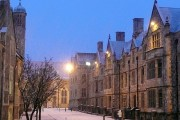 Snowy Castle Avenue