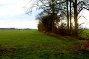 Trackside field edge