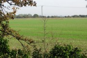 View across farmland, Minster Marshes
