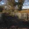Bulhousen Farm, Bisley