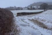 Farmland, Alderley Edge