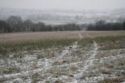 Field near Ladywood Farm