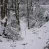 Snow-filled dell, Caerphilly