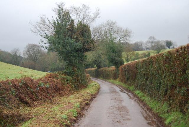 Lane to Stogumber
