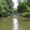 Markeaton Bridge, Markeaton Park, Derby