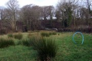 View near Leweston