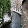 River Tutt