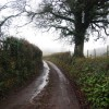 Hurley Lane