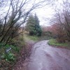 Chilcombe Lane