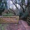 Gate, Thorncombe Lane