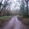 Track to Quantock Moor Farm