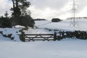 Farm road, Fordswell