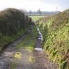 Daws Lane