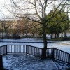 Frozen pond by the River Tay
