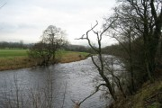 River Ribble near Fishes and Peggy Hill
