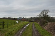 Track to Hallcliff Farm, Wadshelf