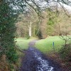 Bridleway to Lingfield