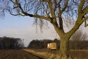 North of Bainton, E Yorks