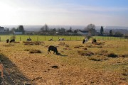 Farmland between Ainsworth and Breightmet