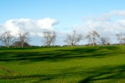 Near Shandwick Mains