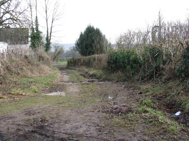 Muddy path at Taleford