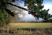 North Ducklington