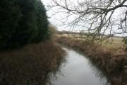 River Eden: upstream